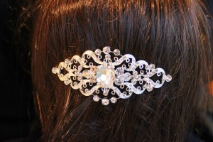 5081 Diamonte hair slide